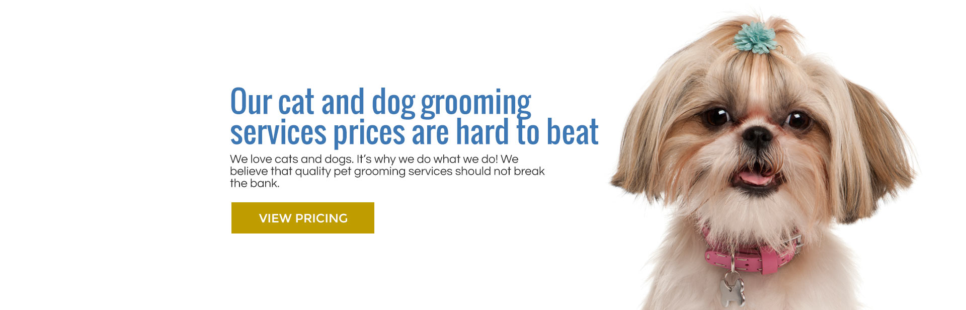 Affordable grooming services for cats and dogs